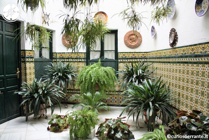 Cordova - Cortili delle case ricche di verde e maioliche