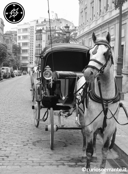 Siviglia - carrozza per le vie di El Arenal