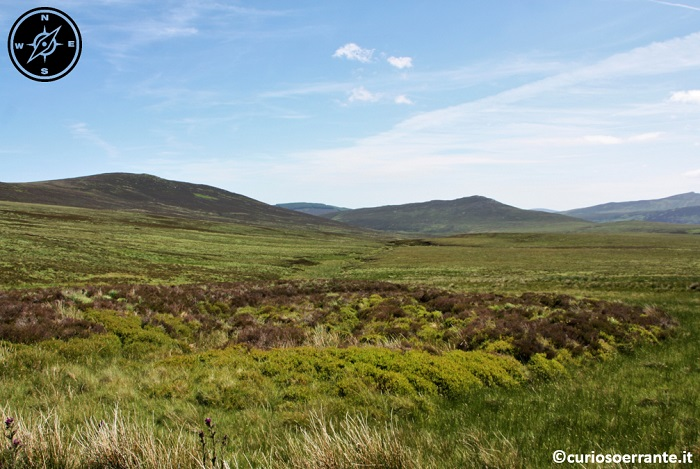Wicklow Mountains e la Military Road - Sally Gap e la distesa di blanked bog