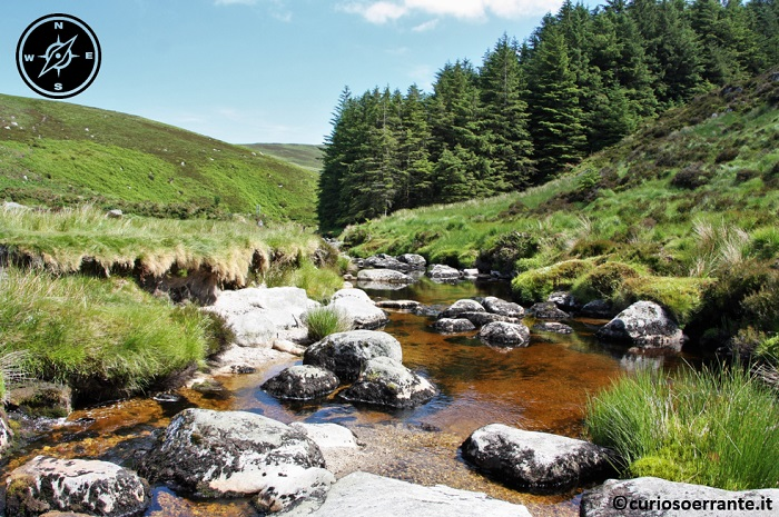 Wicklow Mountains e la Military Road - il torrente glenmacnass prima del Sally Gap