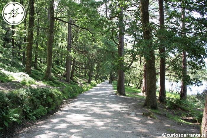 glendalough irlanda - passeggiata lungo i laghi