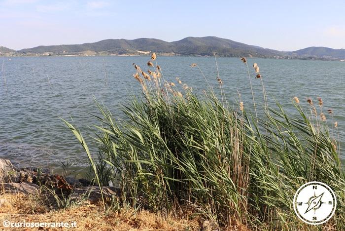 Isola Polvese - il lago trasimeno