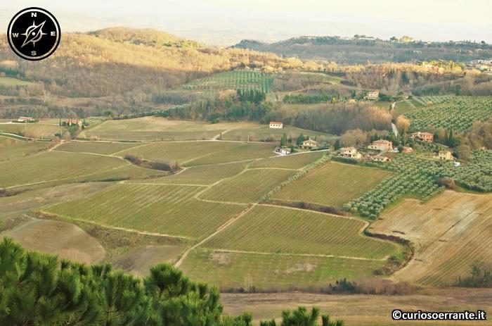 Montepulciano - Vigneti del Vino Nobile di Montepulciano